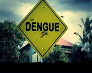 Осторожно! Лихорадка денге!