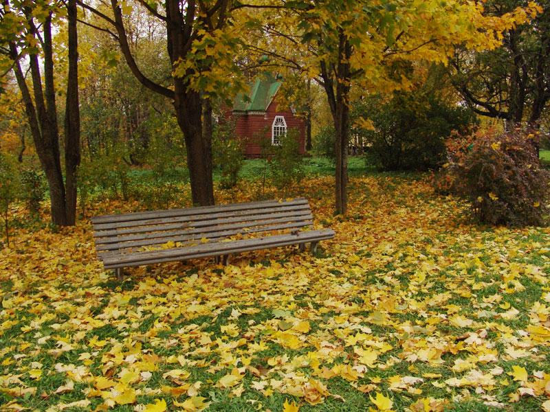 Осенняя скамейка в залесском парке