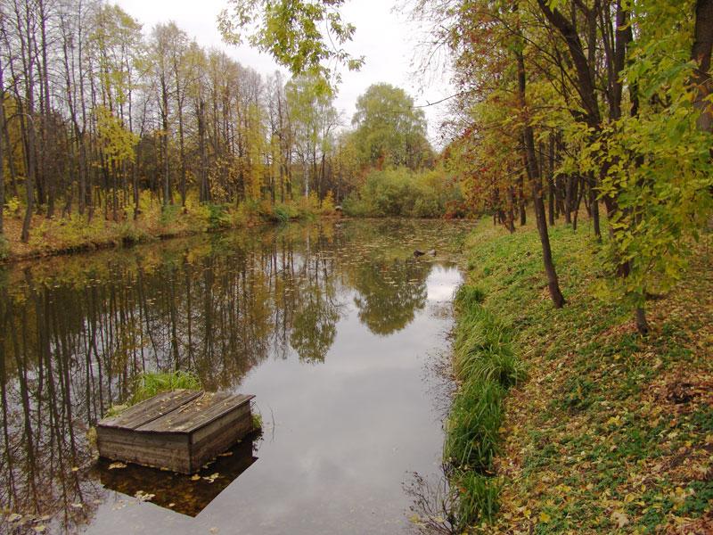 Осенняя пора навевает тоску зеленую