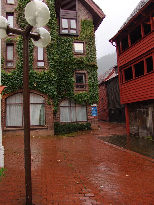 Берген, не смотря на непрекращающийся дождь, очень зеленый город