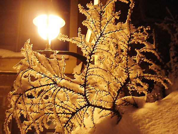 После снегопада в Осло