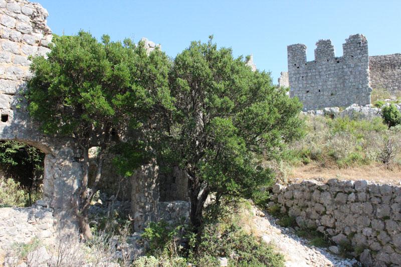 Тропа в крепости к верхнему периметру укреплений